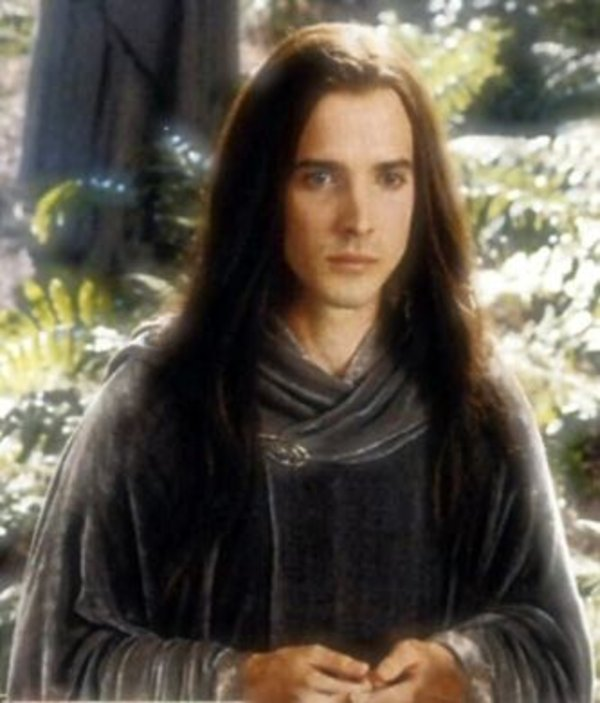 figwit know your meme