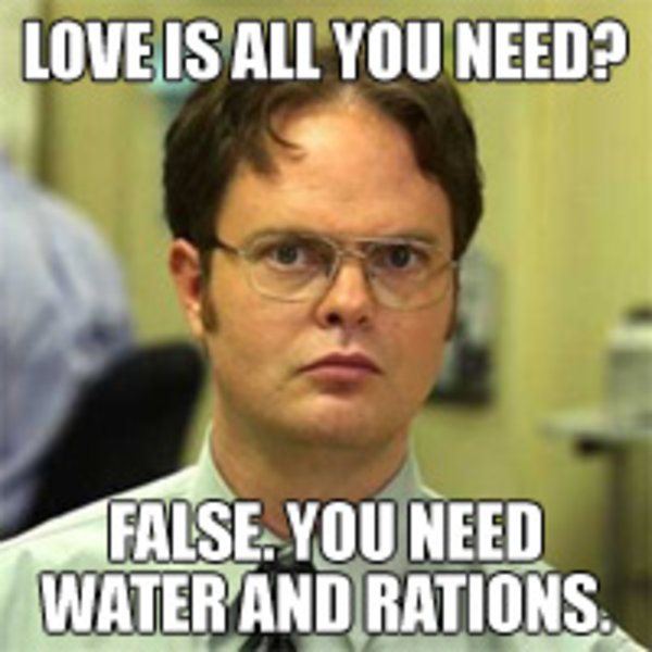 SCHRUTE FACTS schrute facts know your meme
