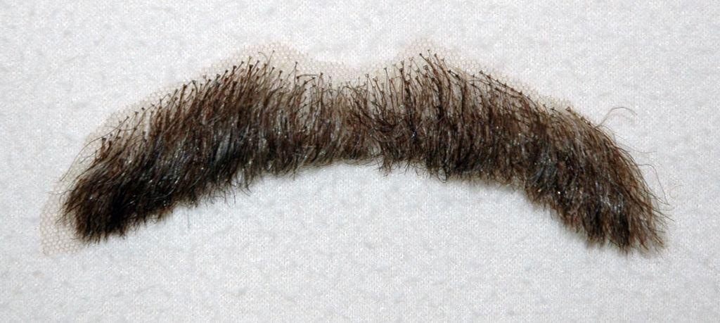 Moustache PNG Transparent Images | PNG All