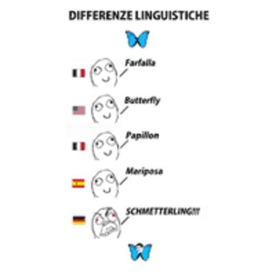 Differenze Linguistiche Schmetterling Differenze Linguistiche | Know