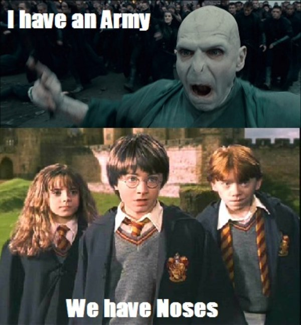 Voldemort_and_his_followers_at_the_Battle_of_Hogwarts i have an army we have an x know your meme