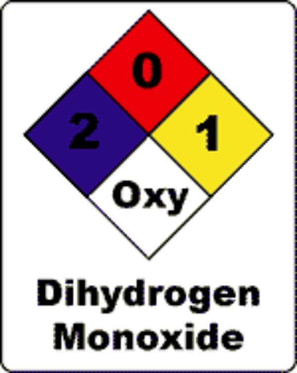 Should really Dihydrogen Monoxide come to be banned? Composition Small sample