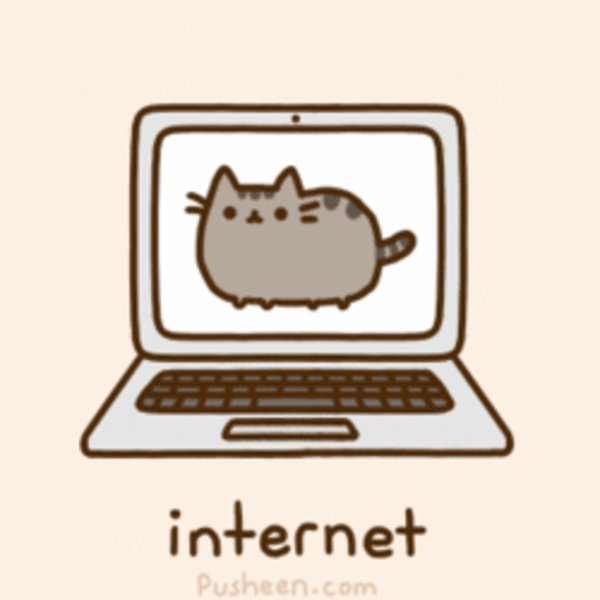 internet pusheen know your meme