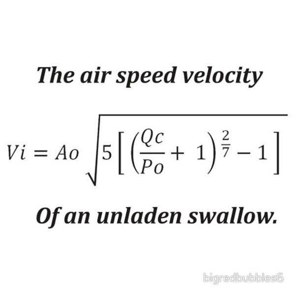 Air Speed Velocity Swallow 55