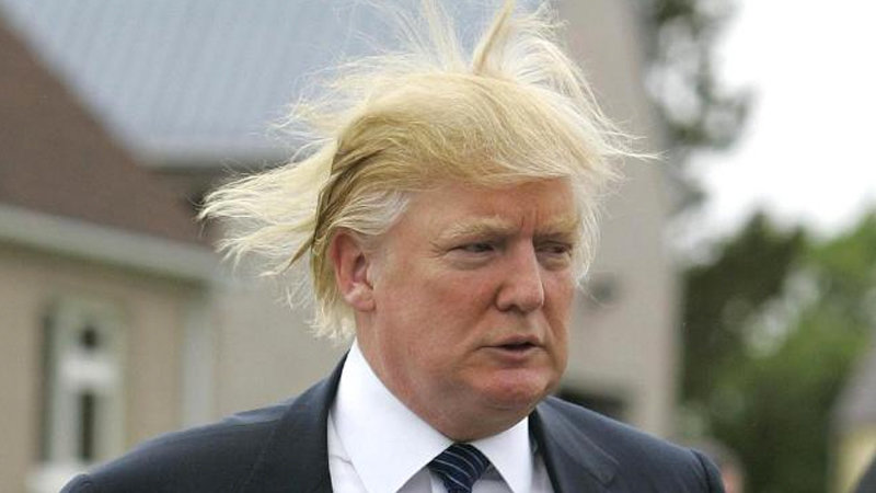 donald trump hair meme donald trump s hair know your meme