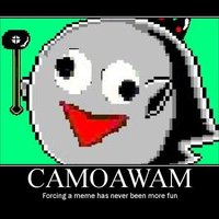 Camoawam