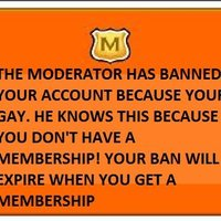 Fake Club Penguin Bans