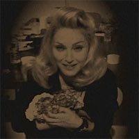 Madonna Loathes Hydrangea