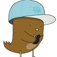 Brown Twitter Bird