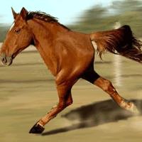 Retarded Running Horse / Two Legged Horse
