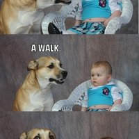 Dad Joke Dog
