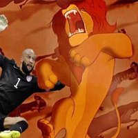 Things Tim Howard Could Save