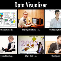 Data Visualizer—What people think I do