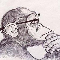 Consciouschimp