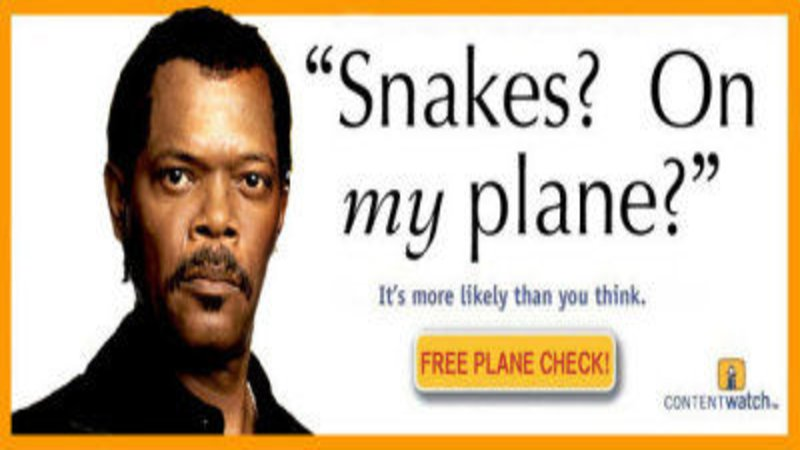 Snakesonmyplane it's more likely than you think know your meme