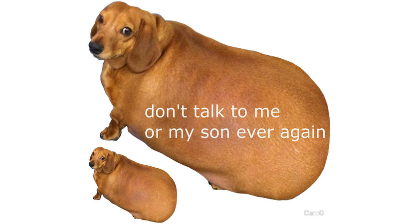Dont Talk To Me Or My Son Ever Again in addition Sausage Party Dvd Release Date together with 101542166571004084 moreover 8600289861 additionally 12 Best Dachshund Memes Of All Time. on weiner jokes