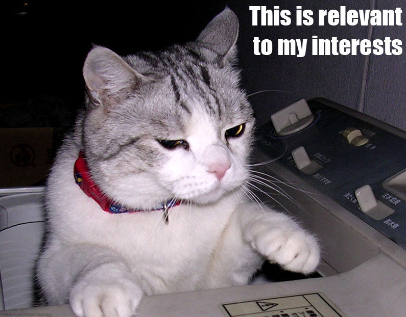Cats Know Your Meme - 21 cats losing fight against technology