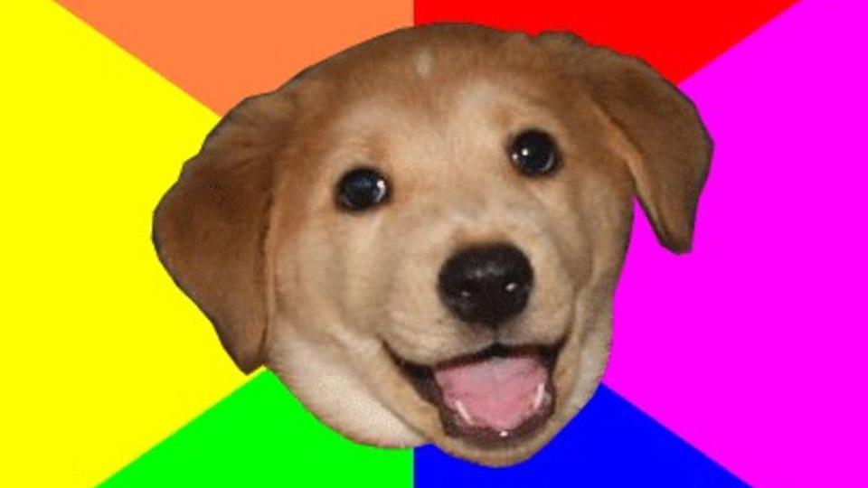 advicedog advice dog know your meme