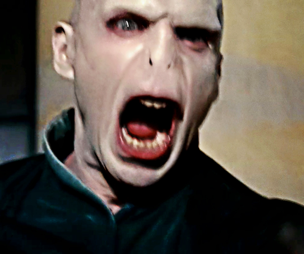 Voldemort s Wilhelm Scream   Know Your MemeScream Meme