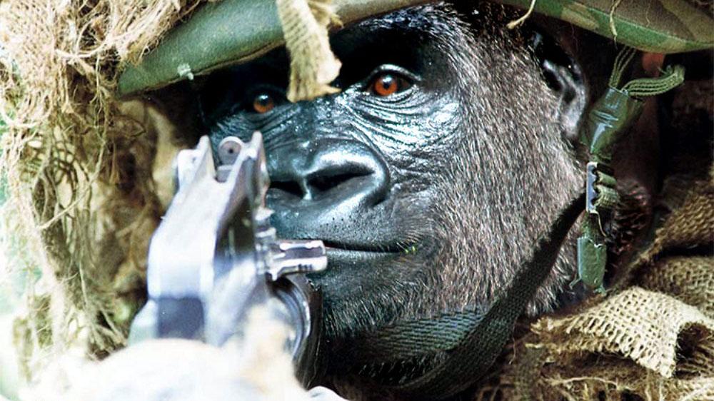 Image result for gorilla warfare