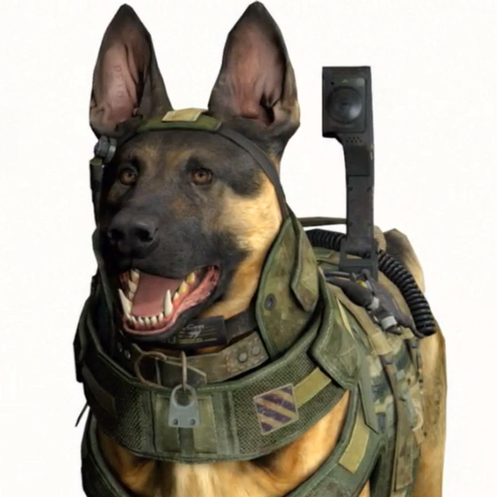 Image 548622 call of duty dog know your meme - Call Of Duty Dog