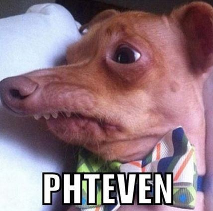Phteven / Tuna the Dog | Know Your Meme - photo#2