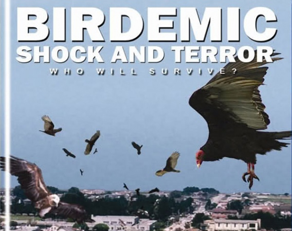 Birdemic Know Your Meme