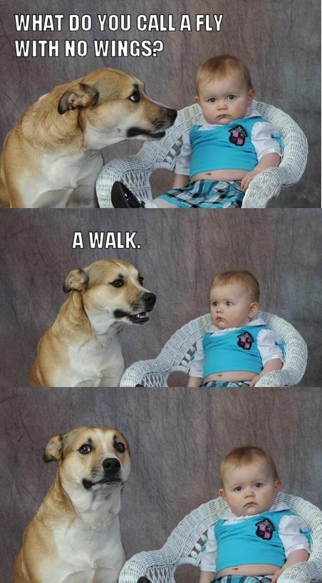 AhnUG9U dad joke dog know your meme