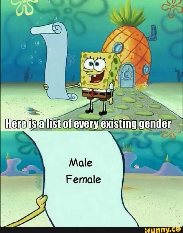12f528f5397f51dc4bff2d6ad642b1b74a57313bb9dfe9db5f504a4ae8d8ec40_1 there are only 2 genders know your meme