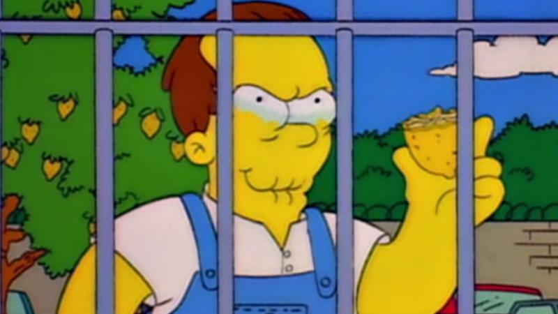 The Simpsons / Memes - TV Tropes