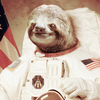 Astronaut Sloth