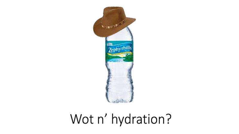 """""""What in Tarnation"""" Gets Really Texan"""