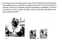 Technoviking Artist Gets a Fine of €15,000