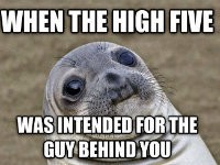 Awkward Moment Seal Feels Your Pain