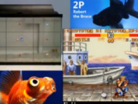 Two Fish Are Playing <i>Street Fighter</i>