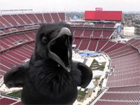 Live Cam at Levi's Stadium Gets a Surprise Visit