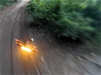 Three Quadcopter Drones Racing in the Forest
