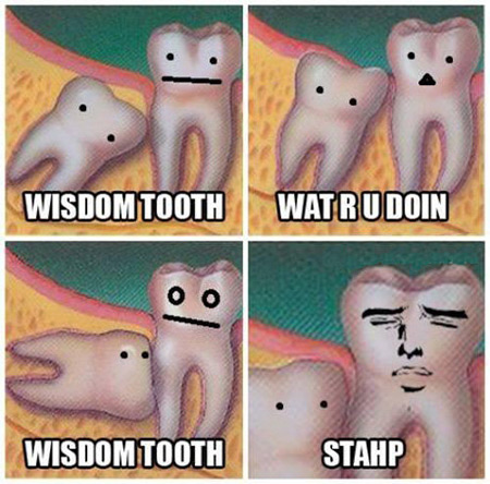 Stahp It, Tooth!
