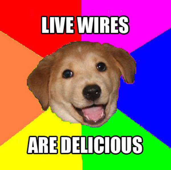 Advice_dog_live_wires advice dog know your meme