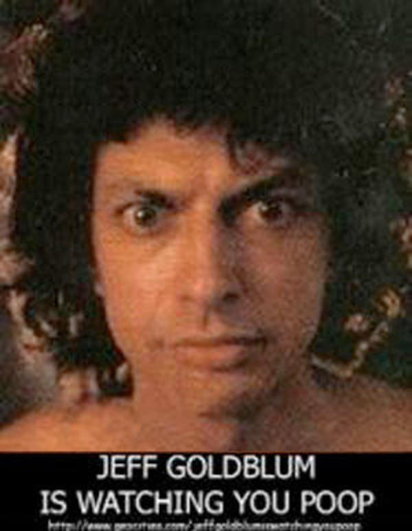 Untitled 1 jeff goldblum is watching you poop know your meme