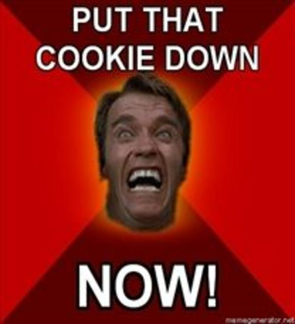 208x228_Angry Arnold PUT THAT COOKIE DOWN NOW20110724 22047 thouxv put that cookie down know your meme,Arnold Meme