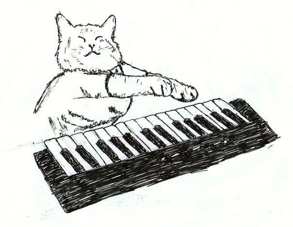 5409_118054736625_506776625_2824155_7778374_n image 48507] keyboard cat know your meme,Keyboard Meme