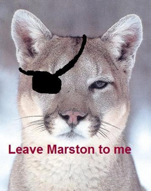 facebook cougar contrecœur