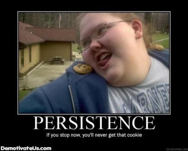 persistance shoulder cookie know your meme