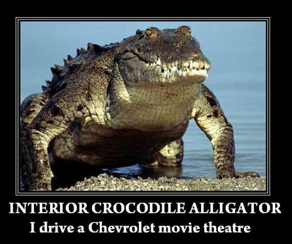 Exceptional INTERIOR CROCODILE ALLIGATOR I Drive A Chevrolet Movie Theatre