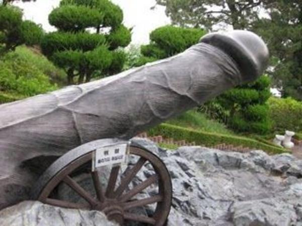 Penis Cannon 10