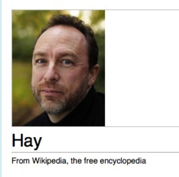 09a wikipedia donation banner captions know your meme