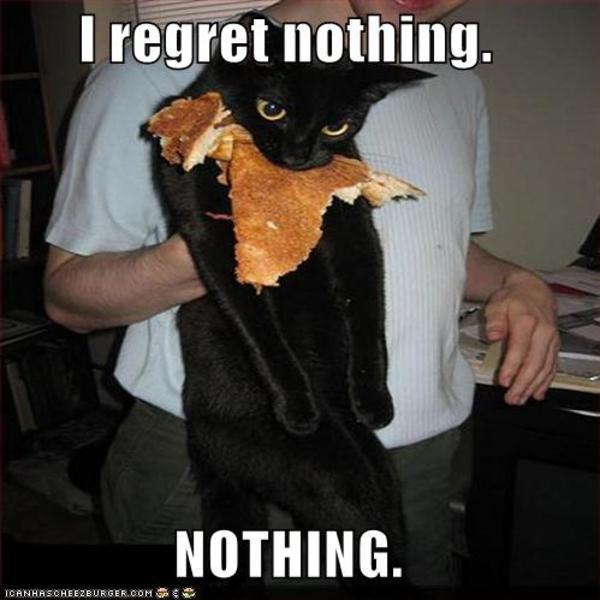 a8d image 257271] i regret nothing know your meme,Pizza Cat Meme