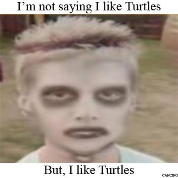 i Like Turtles Meme i Like Turtles