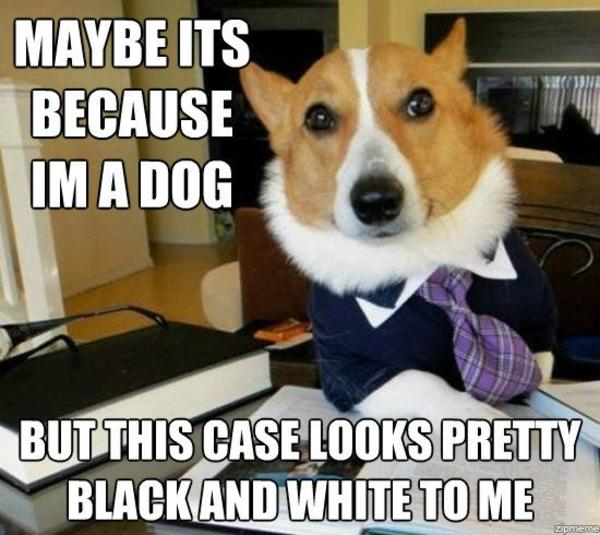 3a9 lawyer dog know your meme